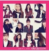 エーピンク (Apink) - 4th Mini Album: Pink Blossom CD