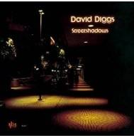 David Diggs - Streetshadows Mini LP CD