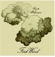 Ricotti & Albuquerque - First Wind Mini LP CD