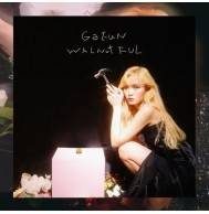 Ga Eun - Mini Album: WALNUTFUL CD