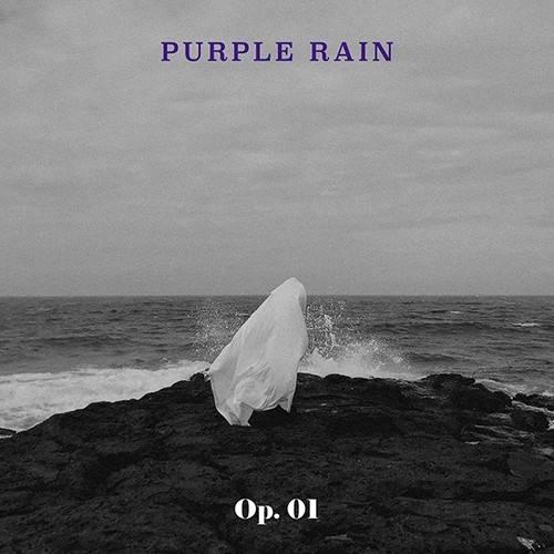 Purple Rain - 1st EP Op. 01
