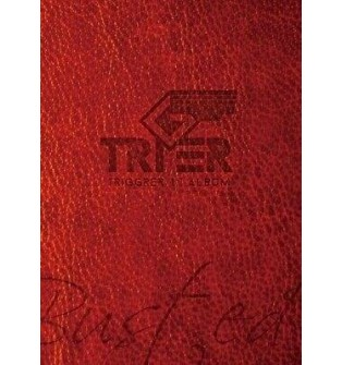 Triger - Single Album Busted